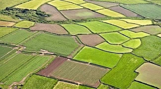 EYVAH: 25 yılda Konya büyüklüğünde tarım alanını kaybettik