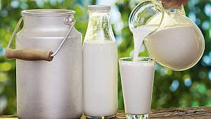 Süt ve yumurta üretimi düştü