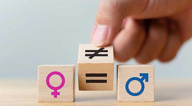 ARAŞTIRMA: Toplumsal cinsiyet eşitliğinde en önde Finlandiya, en sonda Japonya var